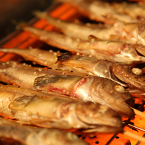 幻の魚「ハタハタ」の料理をご堪能下さい