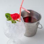 White Rose? or Red Rose? 白い薔薇?赤い薔薇?