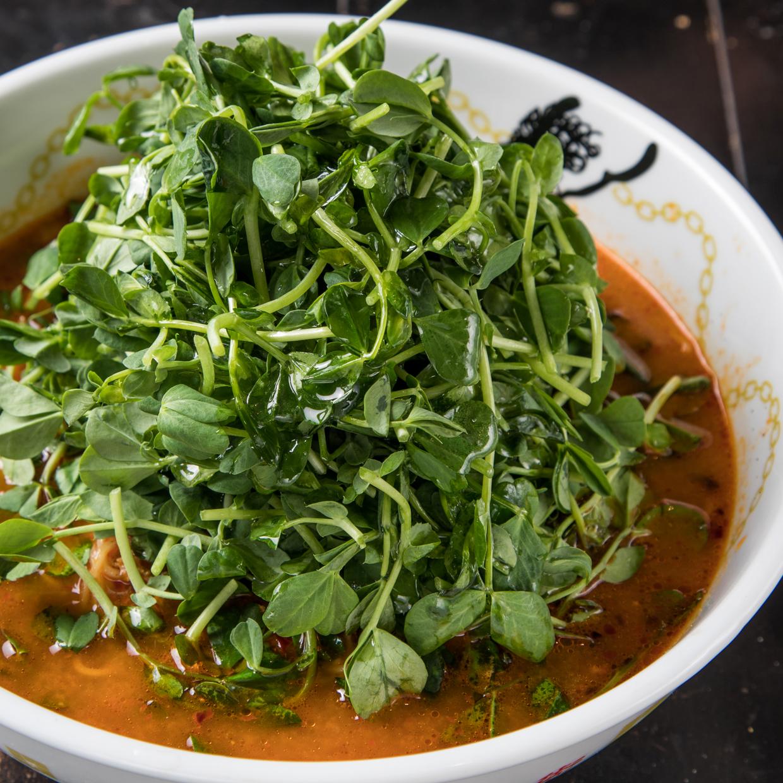 香港細打ち豆苗担々麺